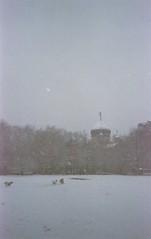 (David Chee) Tags: canon new sure shot af35m ii autoboy 2 kodak ultramax 400 newyork nyc brooklyn williamsburg greenpoint mccarren park russian orthodox cathedral snow dogs street film analog