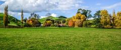 flicker pic (7) (tiraurose) Tags: farm tirau waikato nz autumn
