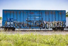 (o texano) Tags: houston texas graffiti trains freights bench benching human a2m adikts wh sts d30