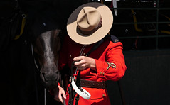 Mounted Police (Happily Drive) Tags: street horse vancouver candid streetphotography police mounted rcmp lumix gx8