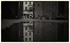 rainy day (VanveenJF) Tags: street boston photo dark alley usa trump backlane old houses bromfield streetphotography reflections zeiss 35mm f28 bromcam