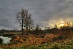 Petit matin d'hiver (Cyril Godissart) Tags: lac nature lake ciel sky sun soleil aurore oiseau bird hiver