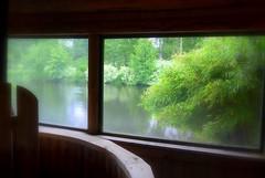 From the sauna (Ken-Zan) Tags: window sauna bastu ästad ljunghav kenzan green växter bambu