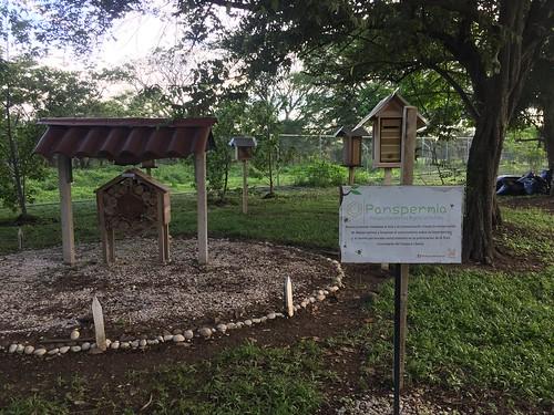 SEmana ambiental en UNA Liberia