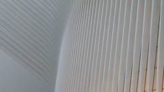 A17765 / calatrava's oculus (janeland) Tags: newyorkcity newyork 10007 lowermanhattan financialdistrict oculus wtctransportationhub architecture abstract architecturaldetail santiagocalatrava architect minimalism lateintheday noncoloursincolour may 2018