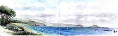 South Coast - Twofold Bay (panda1.grafix) Tags: review nswsouthcoast eden benboydnationalpark twofoldbay pencilinkwash sketch seascape