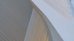 A17778 / calatrava's oculus (janeland) Tags: newyorkcity newyork 10007 lowermanhattan sooc financialdistrict oculus architecturaldetail wtctransportationhub architecture architect santiagocalatrava abstract lateintheday may 2018