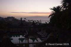 Tenerife - Los Gigantes (CATDvd) Tags: nikond7500 canaryislands illescanàries islascanarias tenerife espanya españa spain february2019 catdvd davidcomas httpwwwdavidcomasnet httpwwwflickrcomphotoscatdvd losgigantes atardecer capvespre dusk postadesol puestadesol sunset travelplanet flickrtravelaward