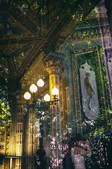 Reflections (Roberto Spagnoli) Tags: reflection tree house villa color photographer fotografiadistrada streetphotography lights lamp bassorilievo basrelief evanescence