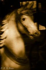 Et les chevaux tournaient, tournaient, tournaient......-9569 (letexierpatrick) Tags: mémoires monochrome sépia chevaux enfance paris france europe extérieur explore manége nikond7000 nikon
