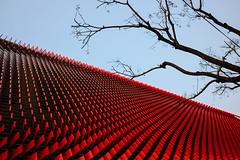 Red Tree (festiveshooter.) Tags: festiveshooter fujix70 fujifilm seoul southkorea travel red architecture gangnam