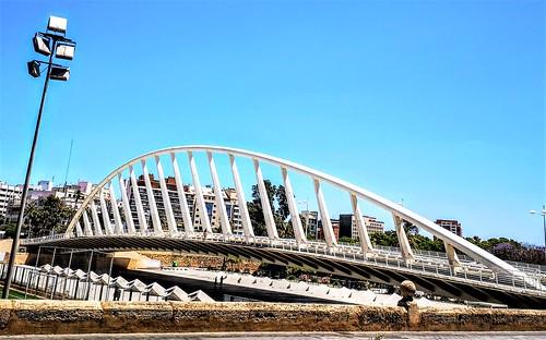 Puente de Calatrava en el El Jardín del antiguo cauce del río Turia - Parque Urbano del Turia - Valencia