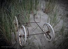 Something is missing (Pieter Musterd) Tags: onderstel wielen jutterskeet omejan kijduin kinderwagen pietermusterd musterd canon pmusterdziggonl nederland holland nl canon5dmarkii canon5d denhaag 'sgravenhage thehague lahaye