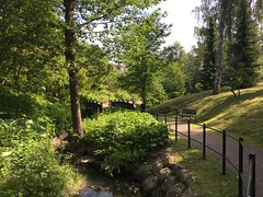 """Summer Green"" (Seppo53) Tags: park helsinki suburb flora green fence walkway tree finland bridge grass water sky morning bench empty summer brook flourish"