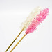 Rock candy on wooden sticks
