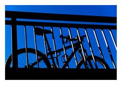 28 [titre BLUEZ] (Armin Fuchs) Tags: arminfuchs lavillelaplusdangereuse bicycle würzburg anonymousvisitor thomaslistl wolfiwolf jazzinbaggies blue bridge friedensbrücke light shadow stripes diagonal fujixt3 contrast