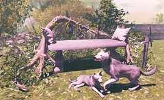 To rest with wolves (Rose Sternberg) Tags: bench for with event driftwood creation tm exclusive decors anims gm30 loverelax life second decor deco wolf wolves stone pillows