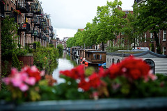 Jordaan, Amsterdam (ebalch) Tags: amsterdam netherlands jordaan district city centre beautiful houses canal flowers red pink boat boats houseboat bridge street ebalch canon 5d