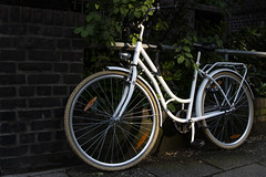 Bicycle catching the last evening sun (bhermann.hamburg) Tags: bicycle fahrrad weiss white sun sonne abend evening