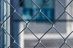 Fence Up Close (Edgar.Omar) Tags: m39 soligor soligor10528 k50 pentax outside nyc urban city queens macro