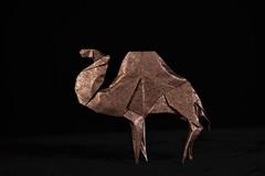 Camel (Djangorigami) Tags: france art paper photography origami savoie papier scupture modèle pliage bellecombeenbauges colors animals