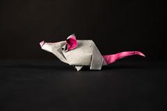 Mouse (Djangorigami) Tags: origami photography papier pliage modèle animals colors