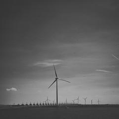 Pinhole Landscape (nikoraffsd850) Tags: pinhole wow landschaft landscape bnw bnwmood küste holland niederlande schönwars schwarzundweis monochrome monochromeworldwide