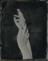 Hands (Bertrand Carrot Film Photographer) Tags: wetplate wetplatephotography wetplatecollodion woman hands largeformat largeformatcamera oldprocess 4x5 photoshoot