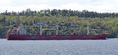 Federal Mackinac - IMO 9299460 (J. Trempe 3,960 K hits - Merci-Thanks) Tags: stefoy quebec canada ship navire fleuve river stlaurent stlawrence vraquier bulker federal mackinac