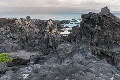 Gateway to Mordor (Austin Westervelt) Tags: hawaii maui rocks rocky island nature water ocean coast beautiful rugged outdoors outside clouds sky light sunlight morning