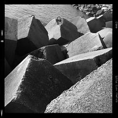 The dike (Martigues - France) (vincent-photo) Tags: analog blackwhite bw caffenolch caffenol film hp5 ilford mediumformat square tlr twinlensreflex vintage 6x6 yashica yashica12 yashicaffenol 120