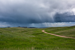 Custer State Park, South Dakota (Dave Hallock) Tags: hallock davehallock nikon d7100 nikond7100 sd southdakota blackhills custerstatepark statepark park nature prarie clouds weather sky backroads dirtroads rain apsc crop cropsensor
