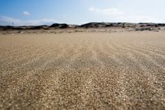 沙浪 (湯小米) Tags: canon sand taiwan 6d 沙灘 ef24mmf14lii 新北市 newtaipeicity
