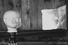 abandoned baby doll head on bottle (Tristan Milk) Tags: baby doll abandoned blackandwhite barbie bjd reborn creepy dollphotography dolls deserted discarded dissipated dropped dumped eliminated empty forgotten forsaken jilted left neglected rejected relinquished shunned sidelined vacated alone cast aside away figurine model puppet dolly effigy figure manikin marionette muppet rotting