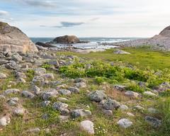 Saltö / Kosterhavet II (Gustaf_E) Tags: bohuslän saltö kosterhavet nationalpark sweden sverige naturreservat sea hav