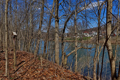 Through the Trees (George Neat) Tags: westmoreland allegheny greatalleghenypassage gap trail sutersville smithdale yough youghiogheny river scenic scenery landscapes georgeneat patriotportraits neatroadtrips laurelhighlands