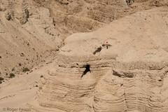 CAVES, QUMRAN, DEAD SEA, ISRAEL_DSC_4654_LR_2.5 (Roger Perriss) Tags: 2019 78may israel qumran deadsea walking stonework stonewalls walls d750 deaseascrolls scrolls bible archaeology scripture jewish