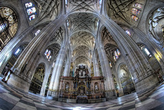 Walking in a Cathedral (Rickydavid) Tags: segovia cathedral cattedrale gothic gotico samyang 8mm fisheye hdr nikon