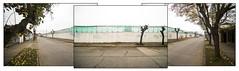 SED DE MALL 5 [ la espera del Mall ] (ORANGUTANO / Aldo Fontana) Tags: chile regióndelmaule linares ciudad city muro wall construcción urbana urban color nikon nikond750 orangutano aldofontana flickr calle street construction building tríptico triptych paisajeurbano urbanlandscape cityscape otoño autumn hojas leaves díanublado cloudyday