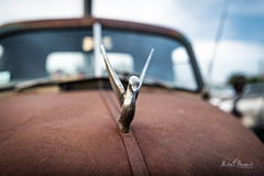 Chevrolet 3600 (Michał Banach) Tags: bułgarska nikond850 poznań poznańskieklasykinocą sigma40mmf14dghsmart automotive car cars motoryzacja oldtimer rusty samochód stadion youngtimer chevrolet3600 chevrolet pickup