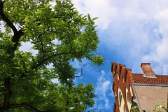 Something green, something old and something blue.. (erlingraahede) Tags: vsco canon angle blue summer germany lübeck