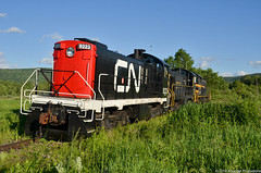 Pups in the sun (Arkangel Productions) Tags: cacv cooperstown charlotte valley canadian national cn claremont concord s7 s4 mlw montreal locomotive works alco american milford ny