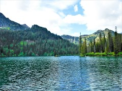Lower Cold Lake (Forest Service - Northern Region) Tags: lakes flatheadnationalforest montana scenic