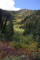 Red Meadow (Forest Service - Northern Region) Tags: flatheadnationalforest montana scenic fallcolors