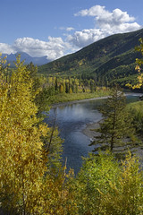 North Fork Flathead River (Forest Service - Northern Region) Tags: rivers streams flatheadnationalforest montana scenic fallcolors
