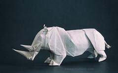 Satoshi Kamiya Origami Rhino (Himanshu (Mumbai, India)) Tags: satoshi kamiya origami rhino himanshu mumbai india animal orukami origamihim himanshuorigami art craft paper