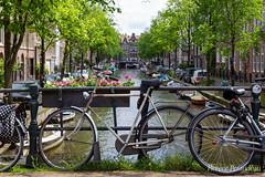 la vie suit son cours, Amsterdam, June 2019 (Florent Péraudeau) Tags: laviesuitsoncours amsterdam june2019 la vie suit son cours june 2019 canon1dmarkiv canon 1d mark ik 4 mk 1 d 24 105 24105 l is usm