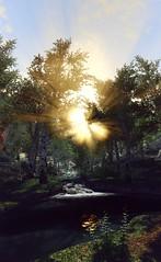 Morning sun (akane_nyoko) Tags: beyond skyrim bruma the elder scrolls v nature