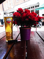 Flowers and a pint (catrionatv) Tags: hampshire winchester thesquare restraunt pub tables chairs awning canopy flowerpot flowers stems leaves petals vape ahhhh glass lager amstel sunshine