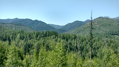 Canyon Creek Valley (Forest Service - Northern Region) Tags: scenic flatheadnationalforest montana coniferforests